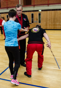 2nd Annual WMAA Texas State Modern Arnis Camp @ Dallas | Texas | United States